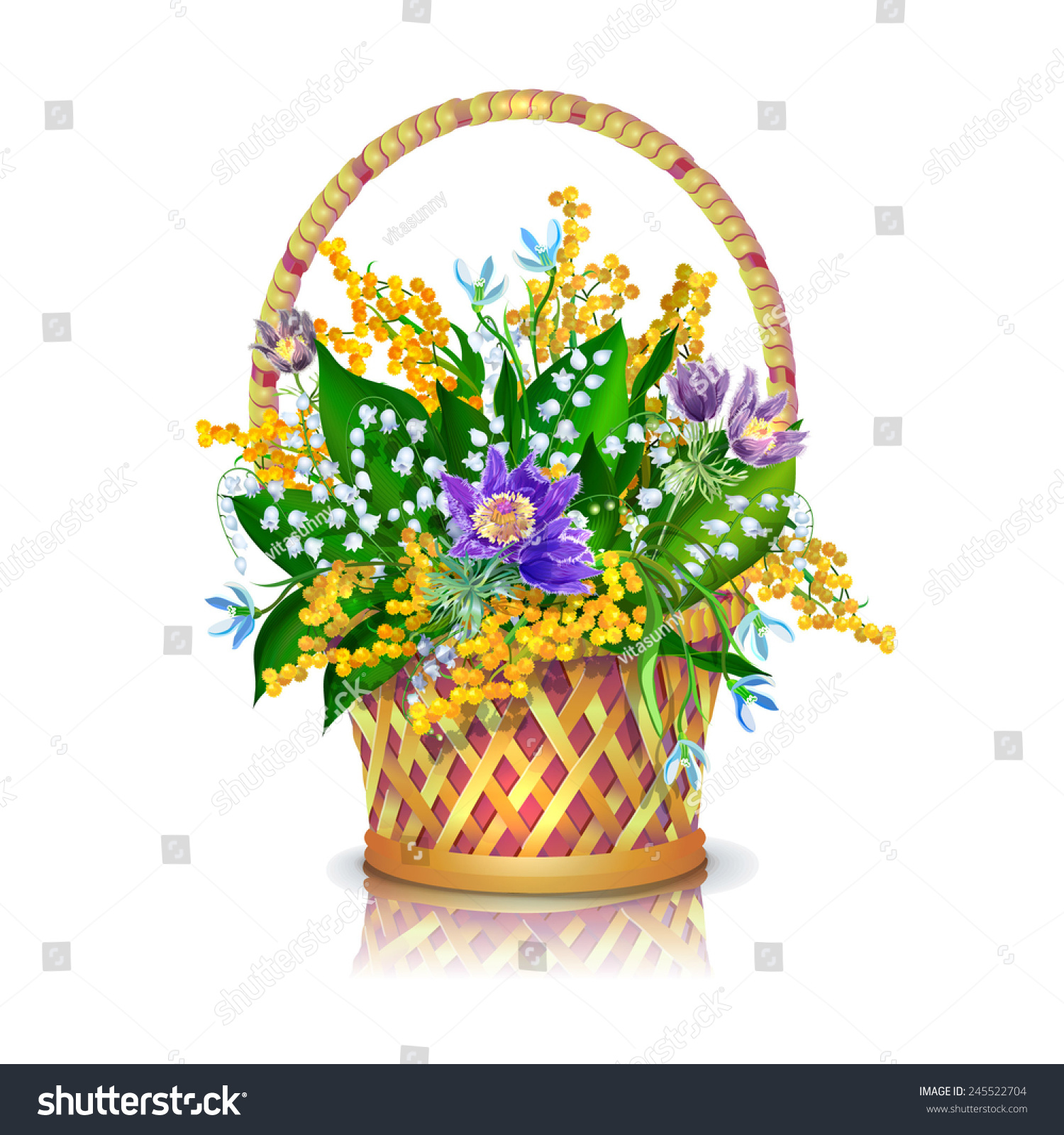 Basket Bouquet Spring Flowers Sleepgrass Snowdrops Stock Vector