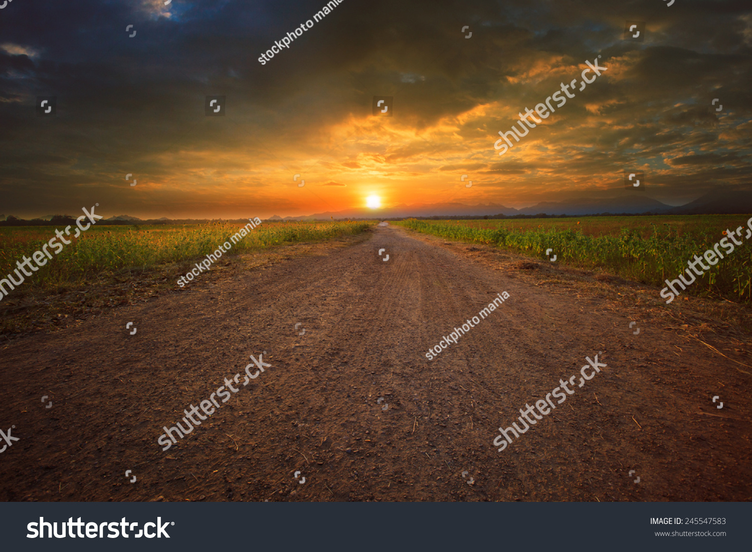 stock-photo-beautiful-land-scape-of-dust