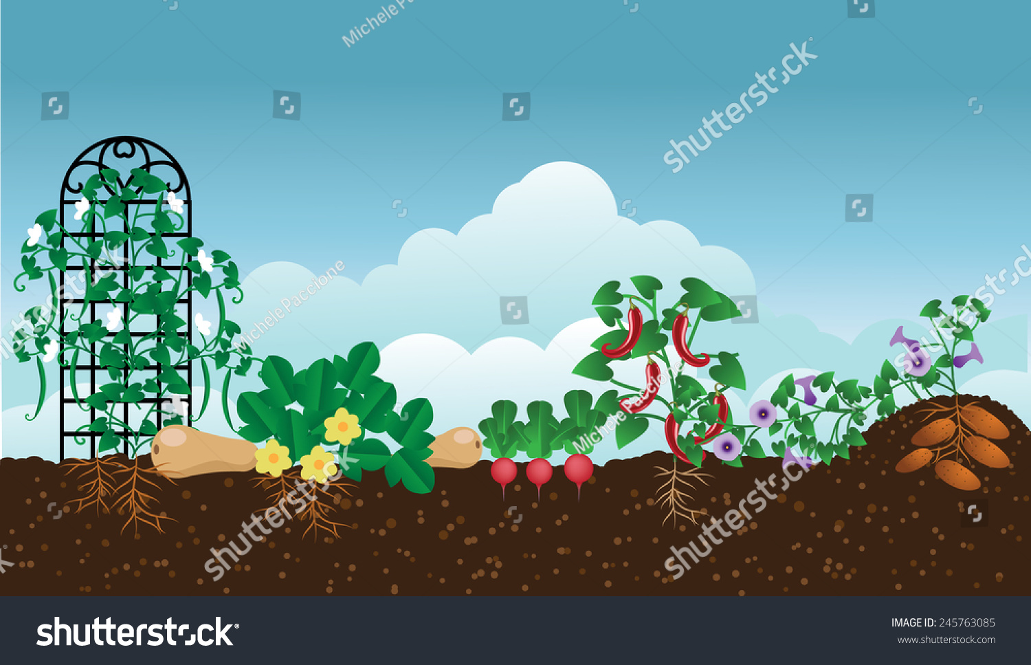 Free stock photo of garden - Vegetable Garden Background With Copy Space Eps 10 Vector Royalty Free Stock Illustration