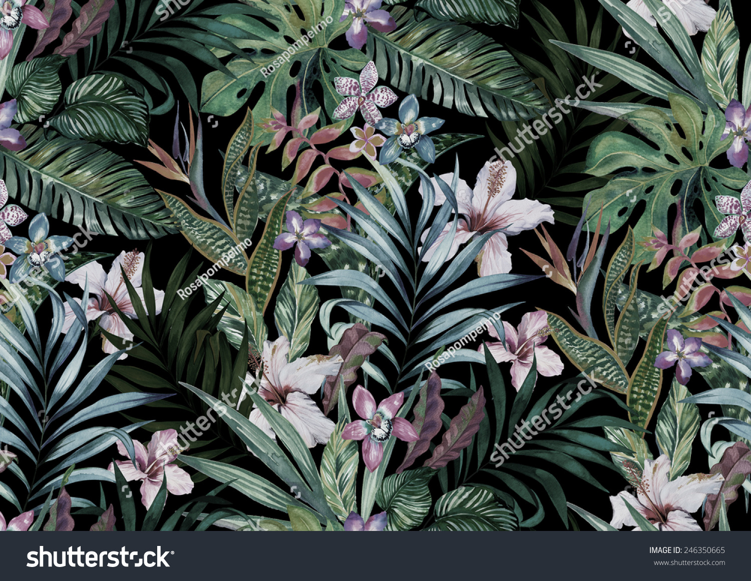 Tropical Floral Print Variety Of Jungle And Island Flowers In Bouquets A Dark Exotic