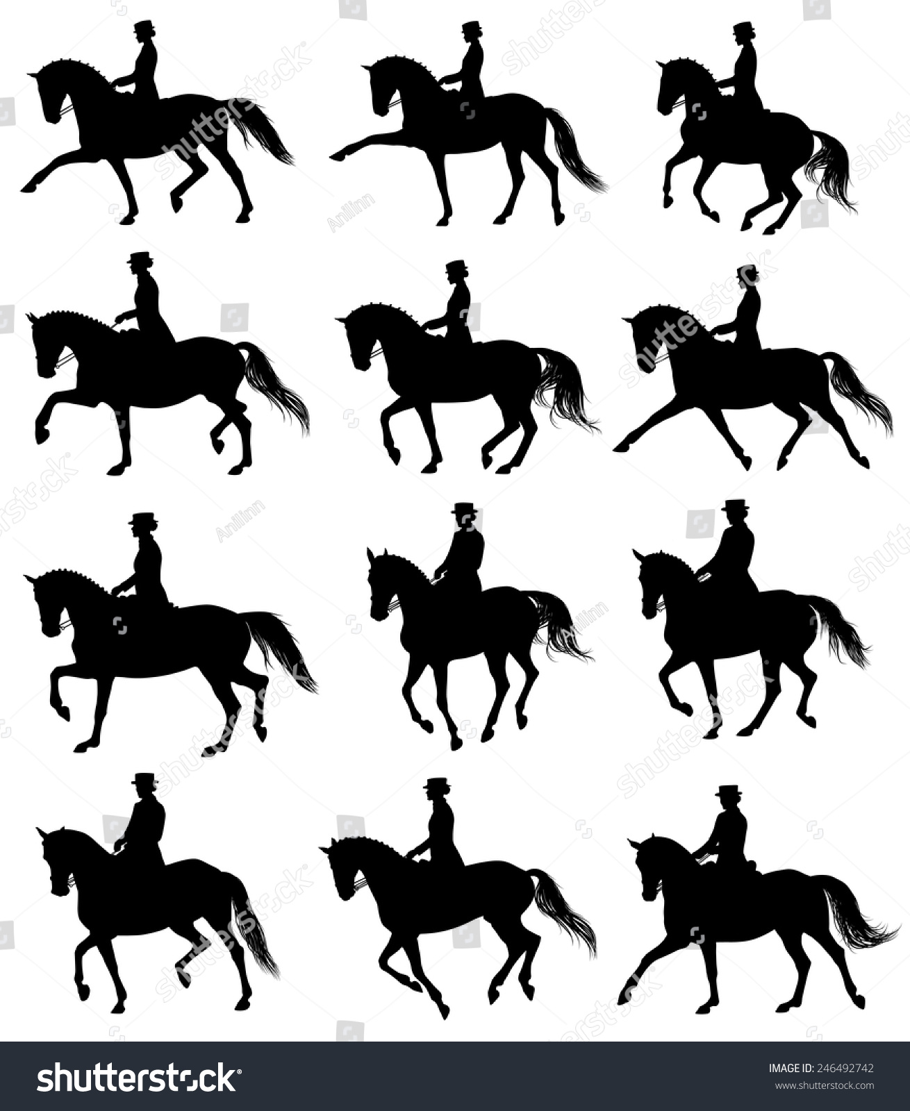 12 Silhouettes Horses Rider Performing Dressage Stock ...