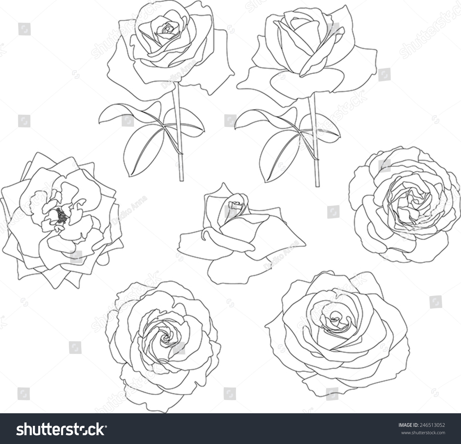 Contour Line Drawing Rose : Roses contour stock vector shutterstock