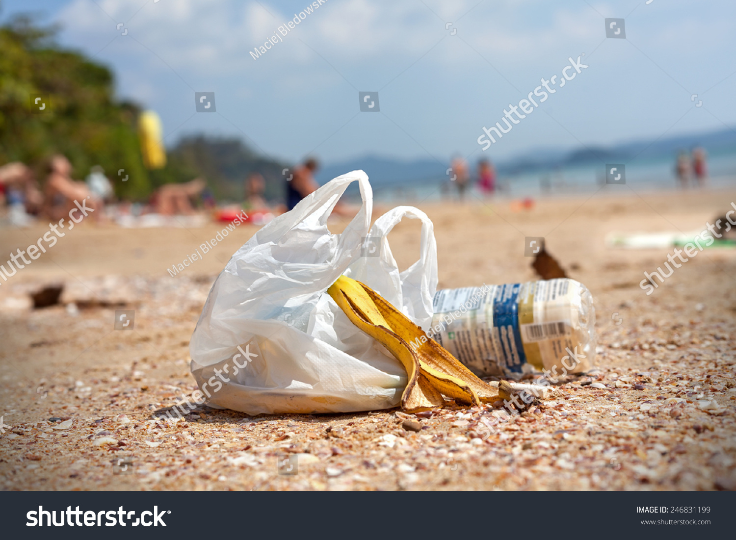 plastic bag pollution essay