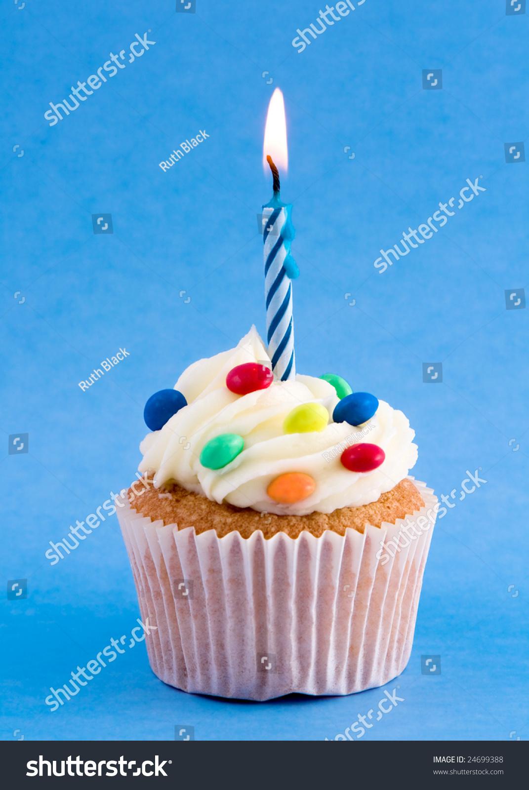 Birthday Cupcake Stock Photo 24699388 Shutterstock