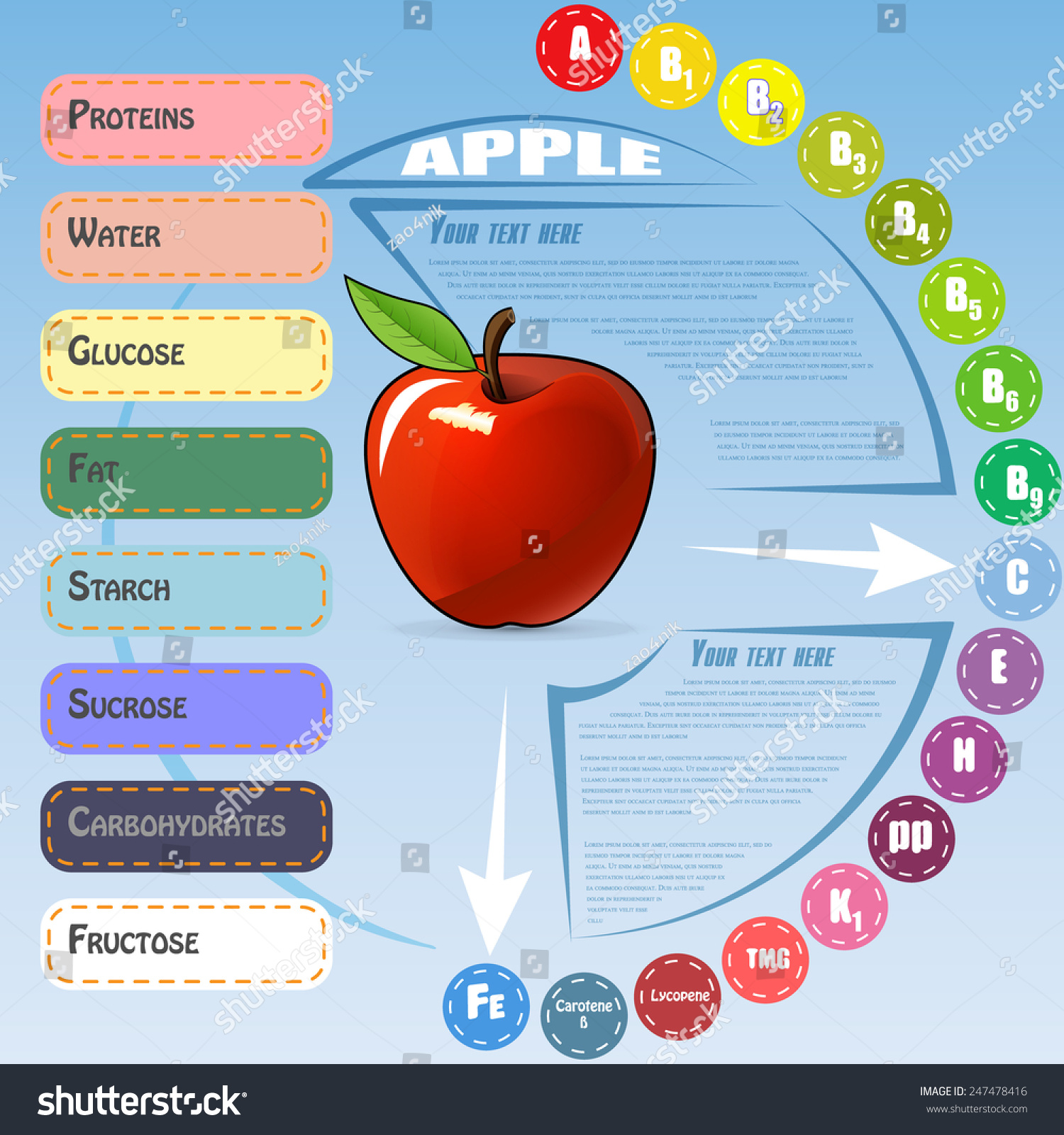 Vector infographic content vitamins minerals apple stock vector vector infographic for content of vitamins and minerals in apple on celestial background ccuart Image collections