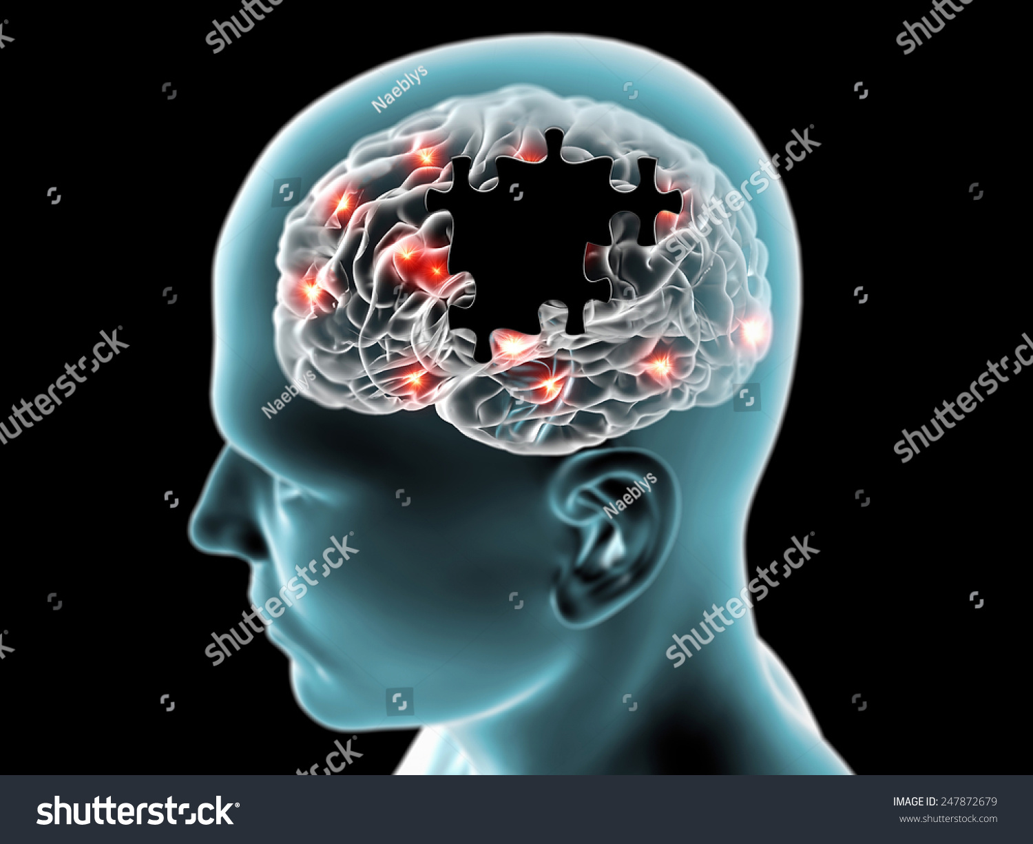 Image result for human cognition is a puzzle