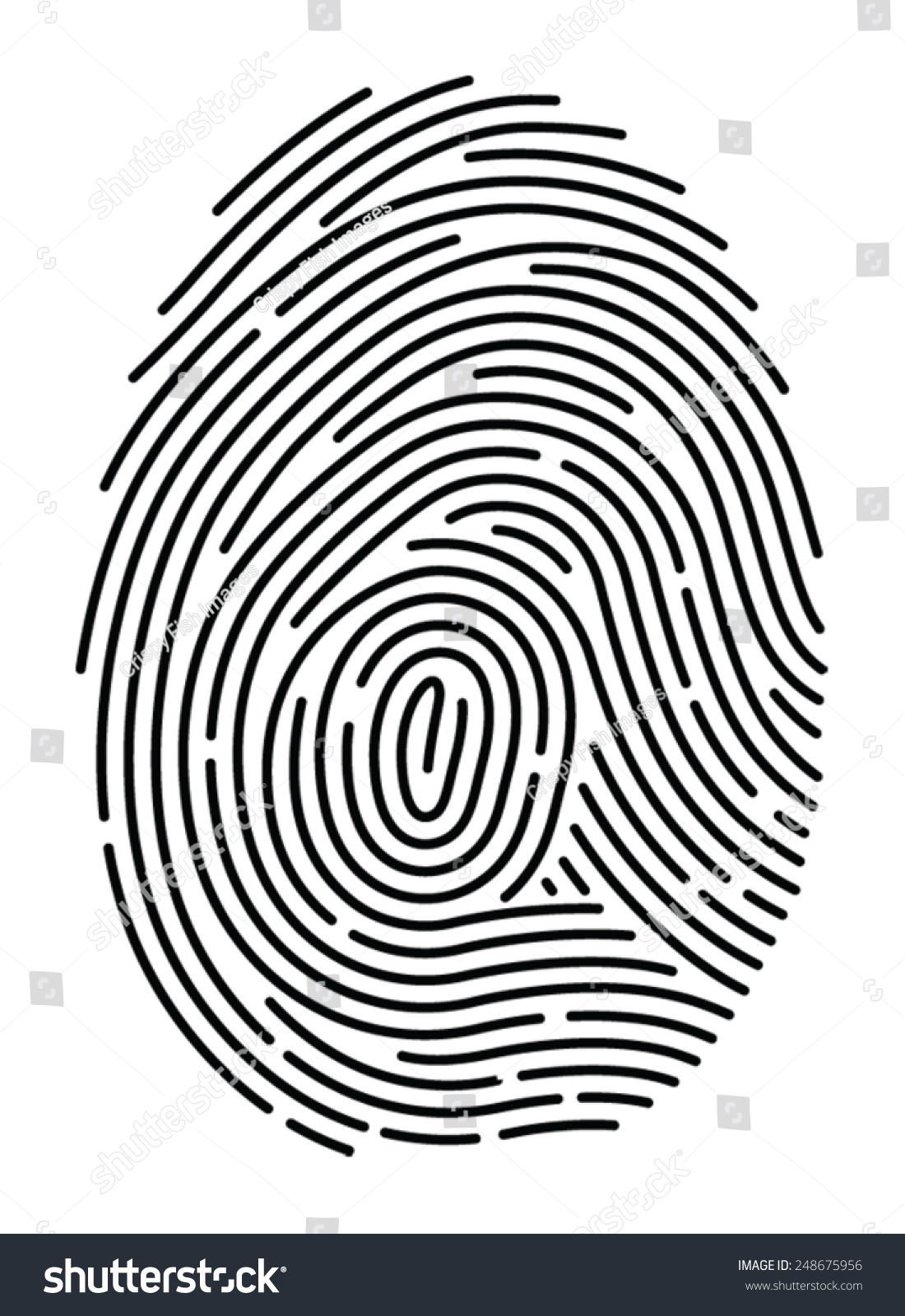 fingerprint template sample - semi simplified fingerprint on white background stock
