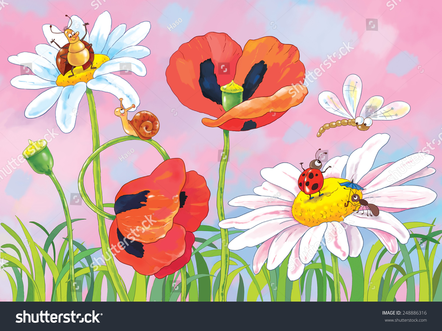Green Grass Flowers Insects Poppies Daisies Stock Illustration ...