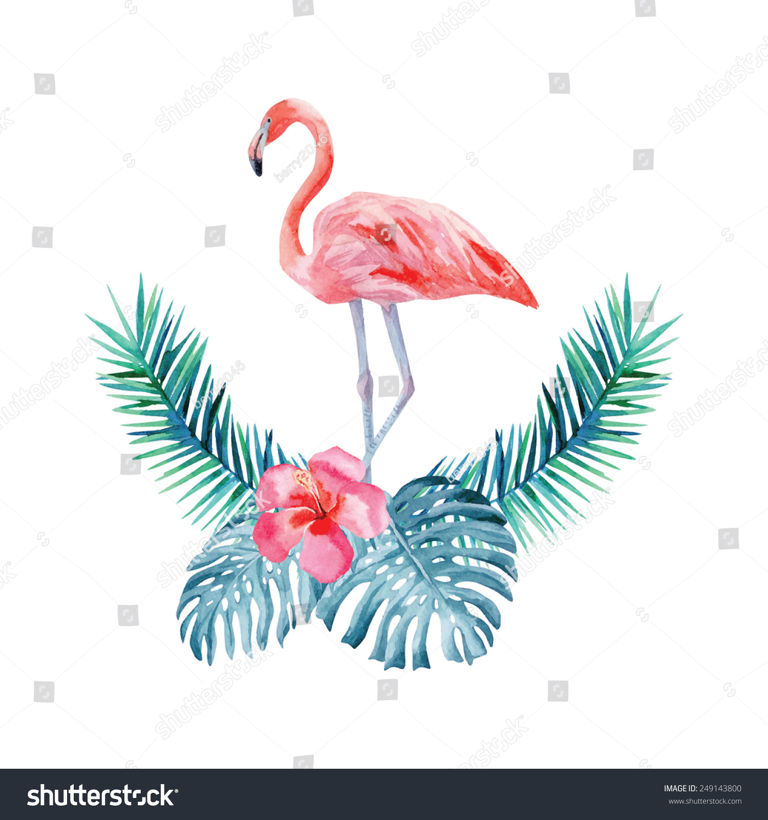 Flamingo  Hibiscus And...