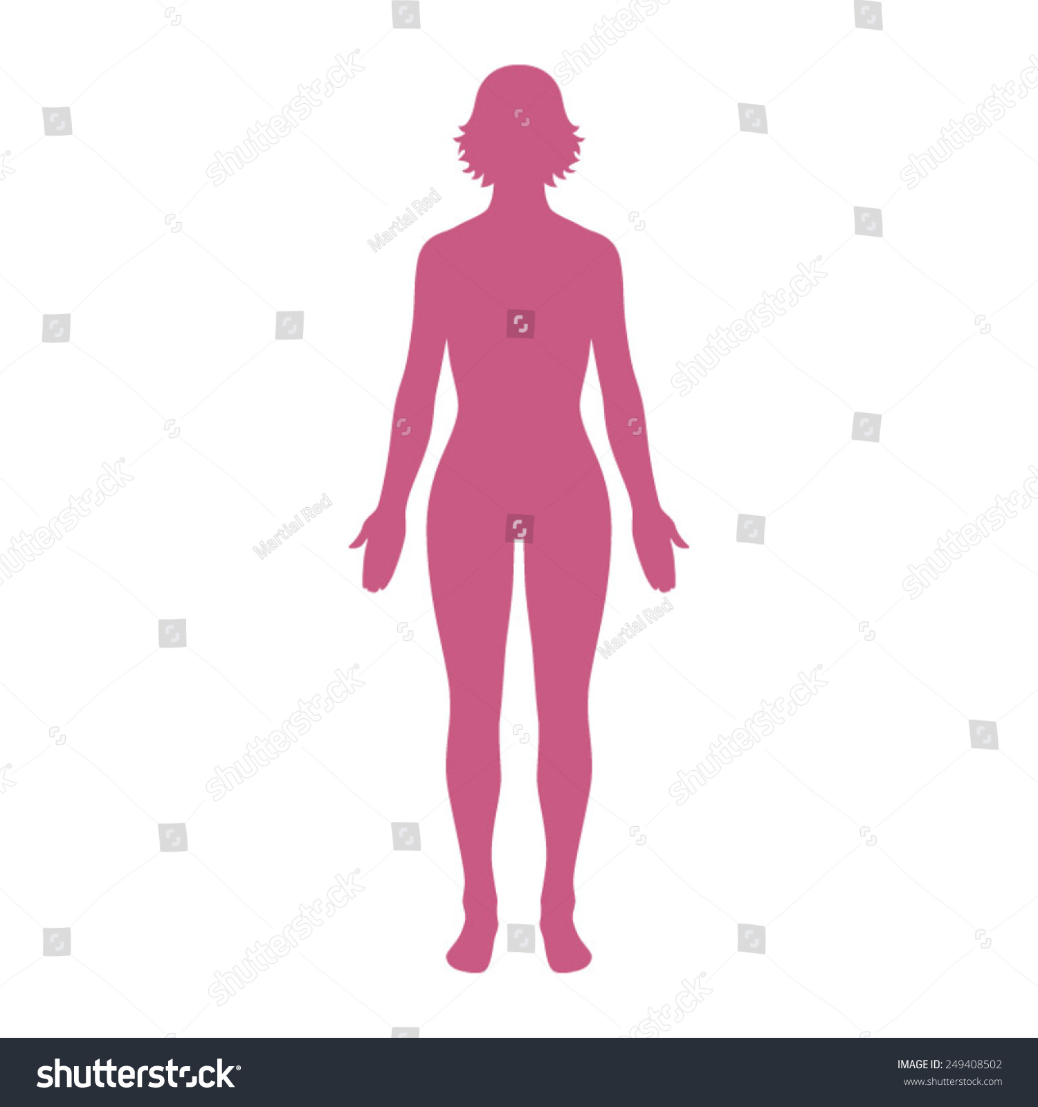 Female Human Body Belonging Adult Woman Stock Vector Royalty Free