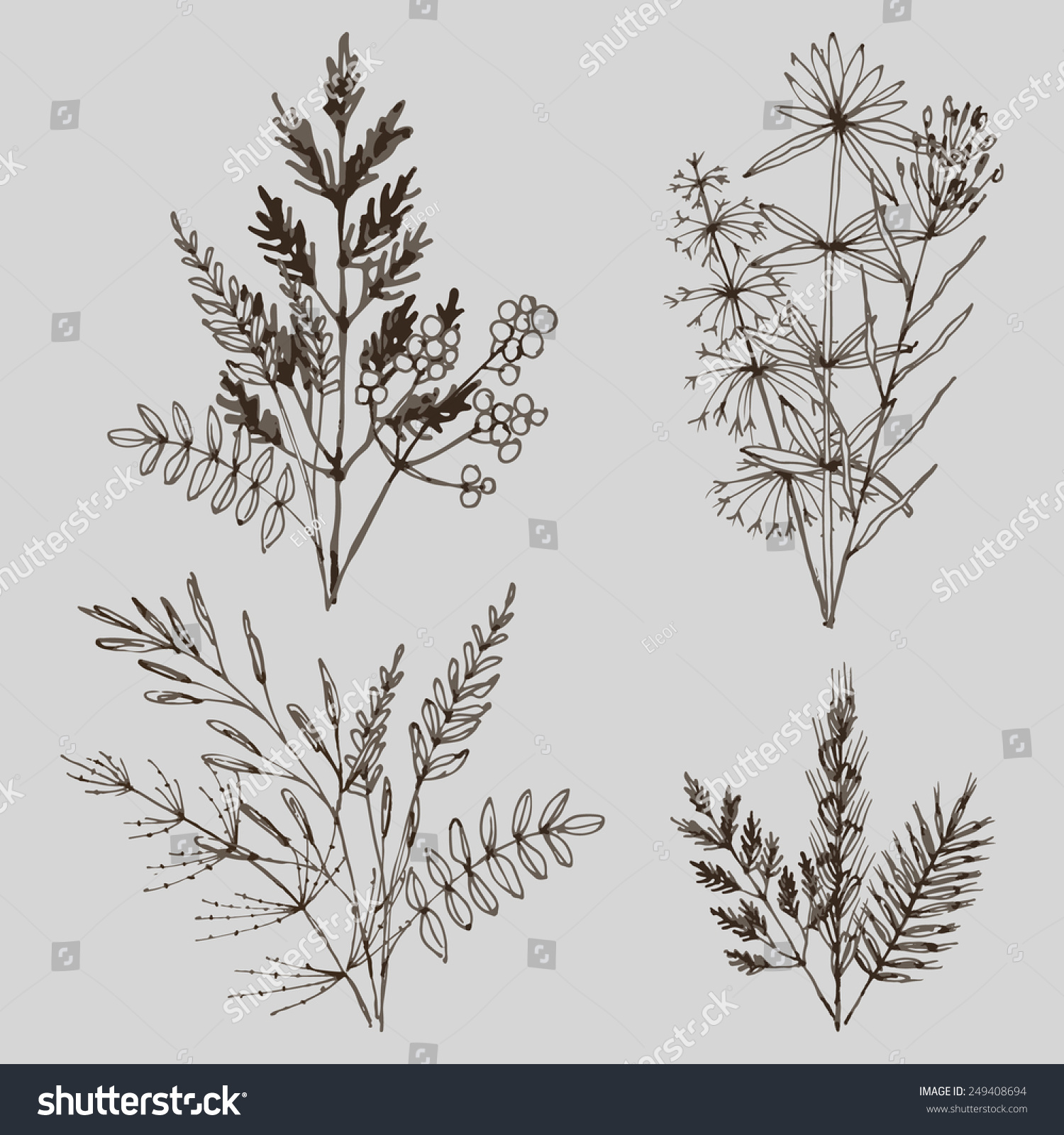 Line Drawing Grass : Set line drawing herbal bouquets bunch stock vector