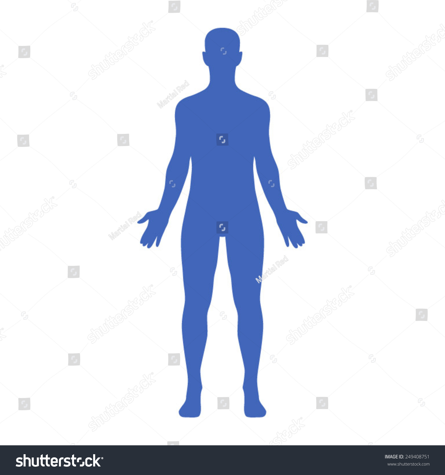 Male Human Body Belonging Adult Man Stock Vector Royalty Free