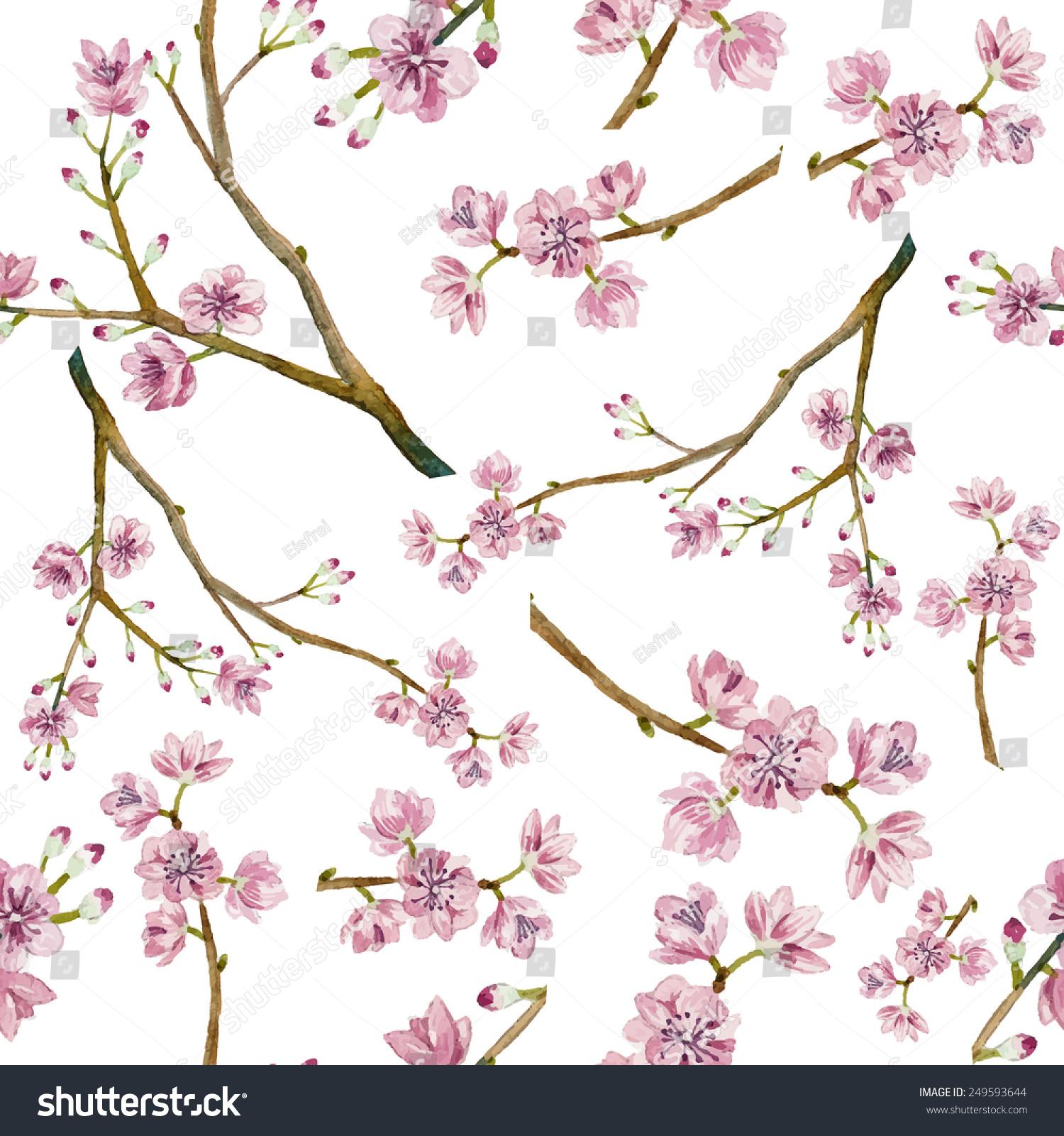 how to draw a cherry blossom tree dragoart