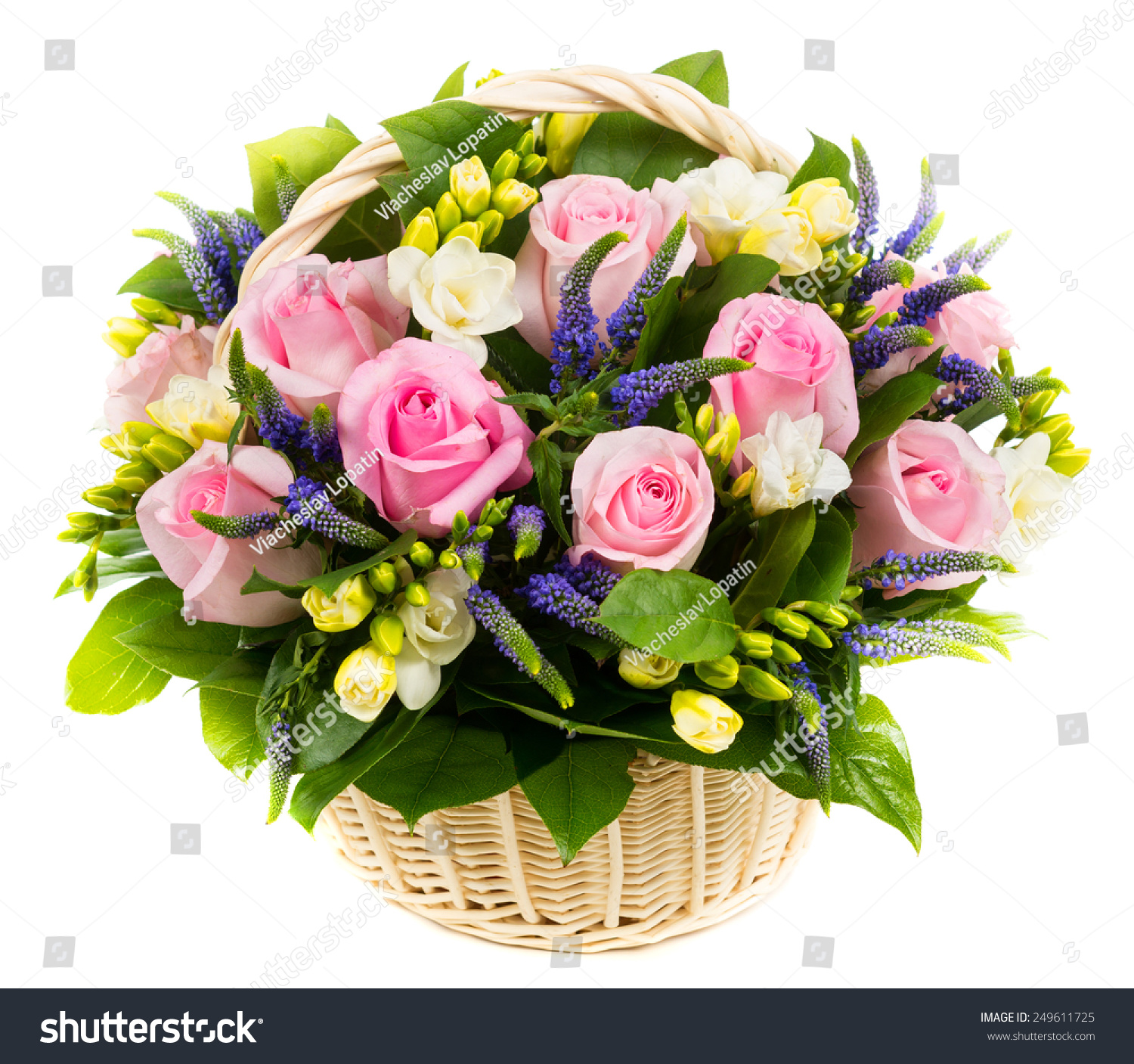 Pink roses other flowers basket isolated stock photo edit now pink roses and other flowers in a basket isolated on white background beautiful natural flowers izmirmasajfo