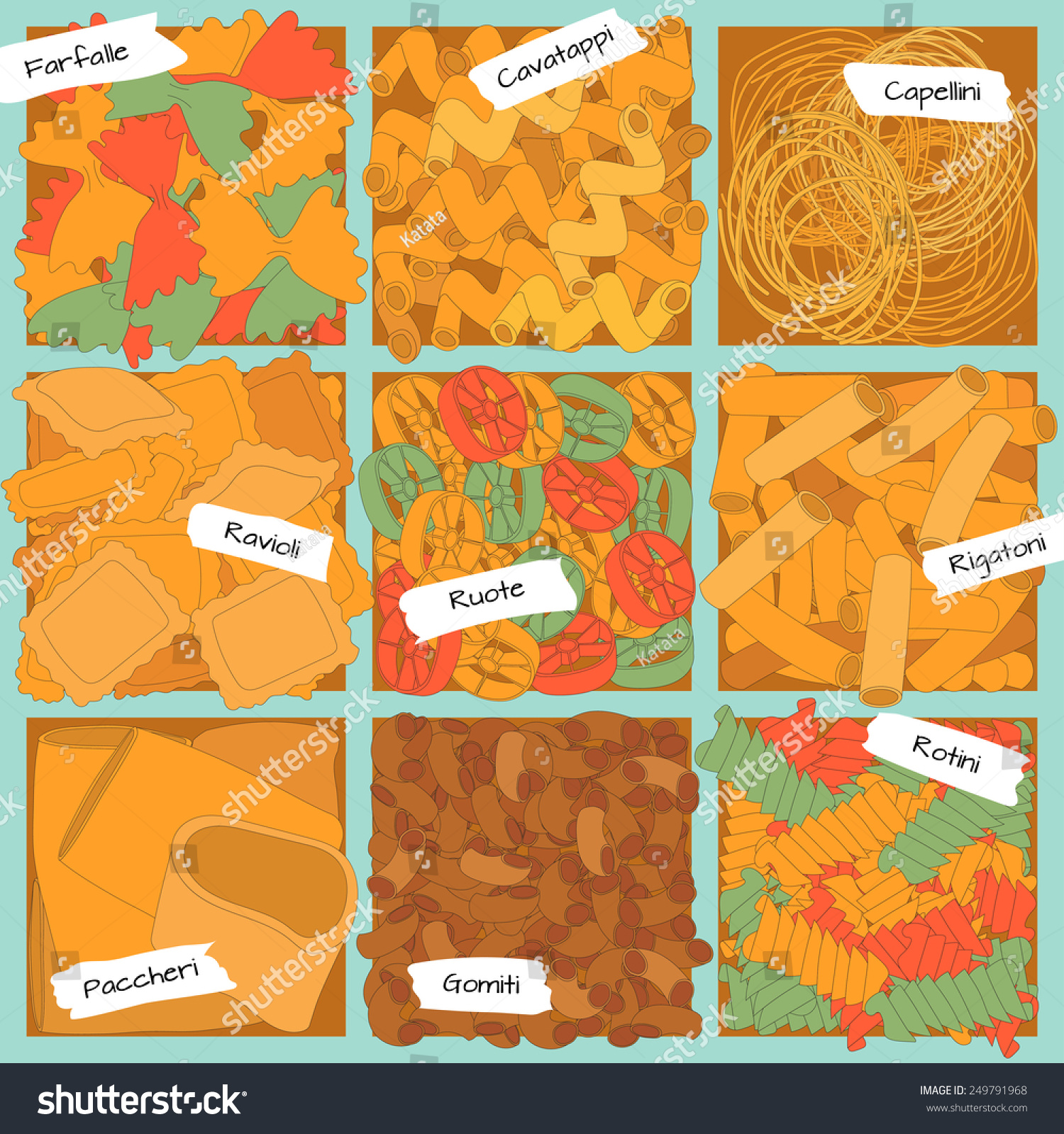Different Types Pasta Separate Cells Names Stock Vector 249791968 ...