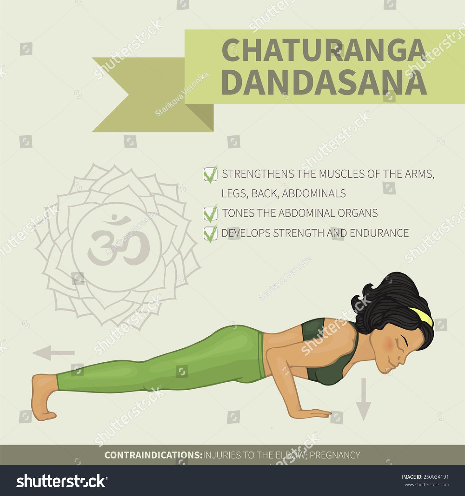 Yoga Infographics Chaturanga Dandasana Hatha Yoga Stock Vector ...