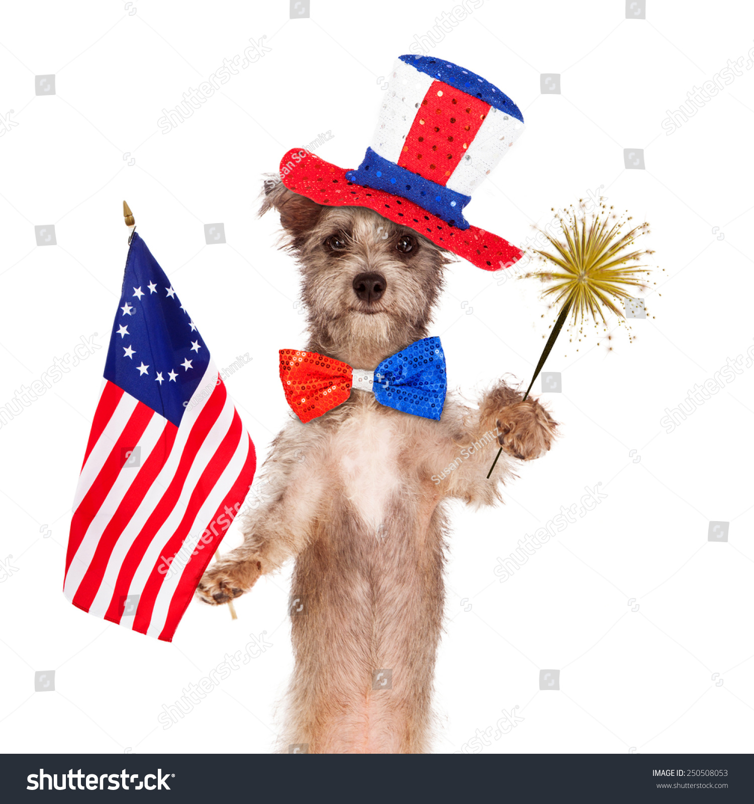 What Breed Is The Dog Independence Day