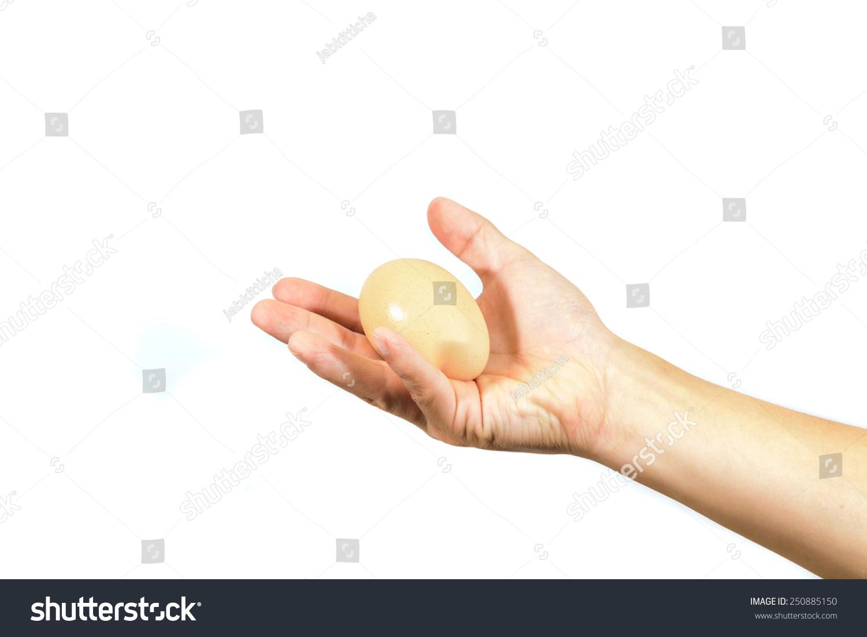 Man Hand Holding Egg Stock Photo 250885150 - Shutterstock