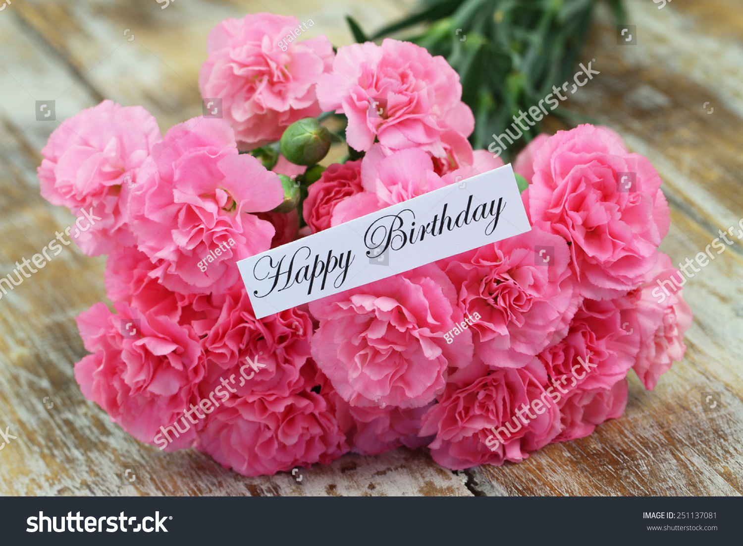 Happy Birthday Card Pink Carnation Flowers Stock Photo Edit Now