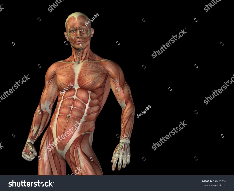 Concept Conceptual Strong Man Anatomy Upper Stock Illustration