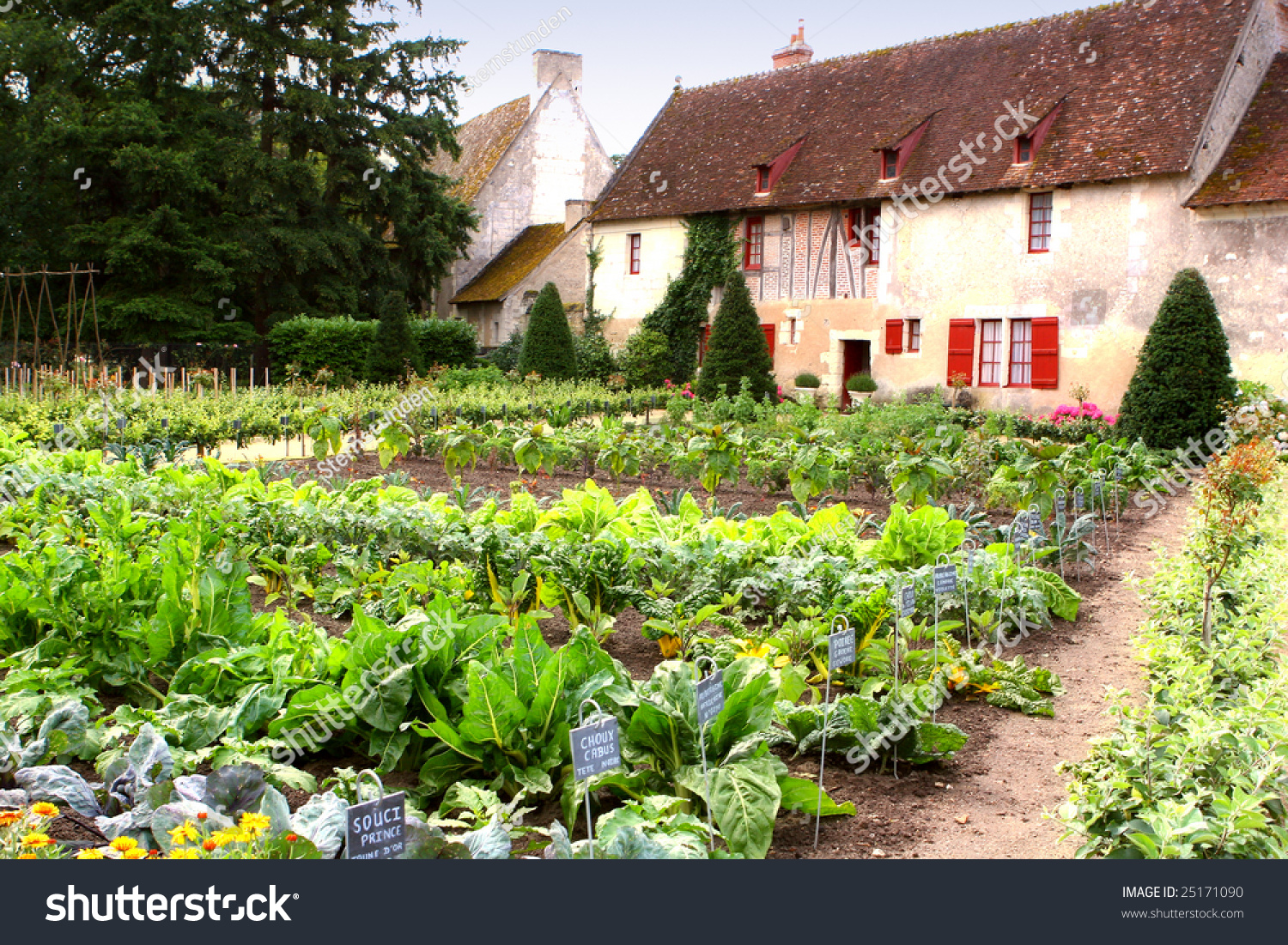 Kitchen Garden Kitchen Garden Vegetable Garden Near Old Stock Photo 25171090