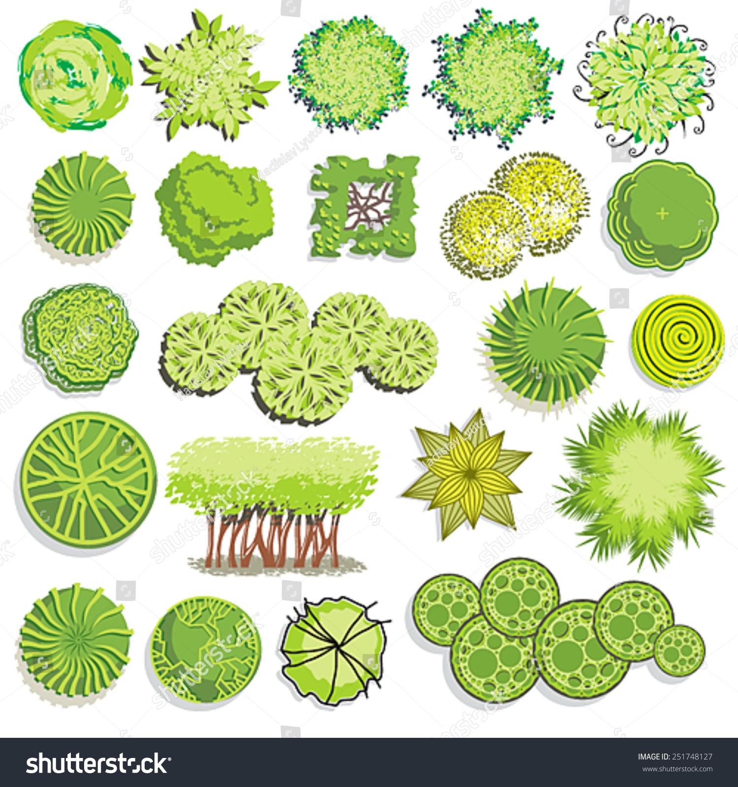 Landscape shrub symbols 875685 for Top view design