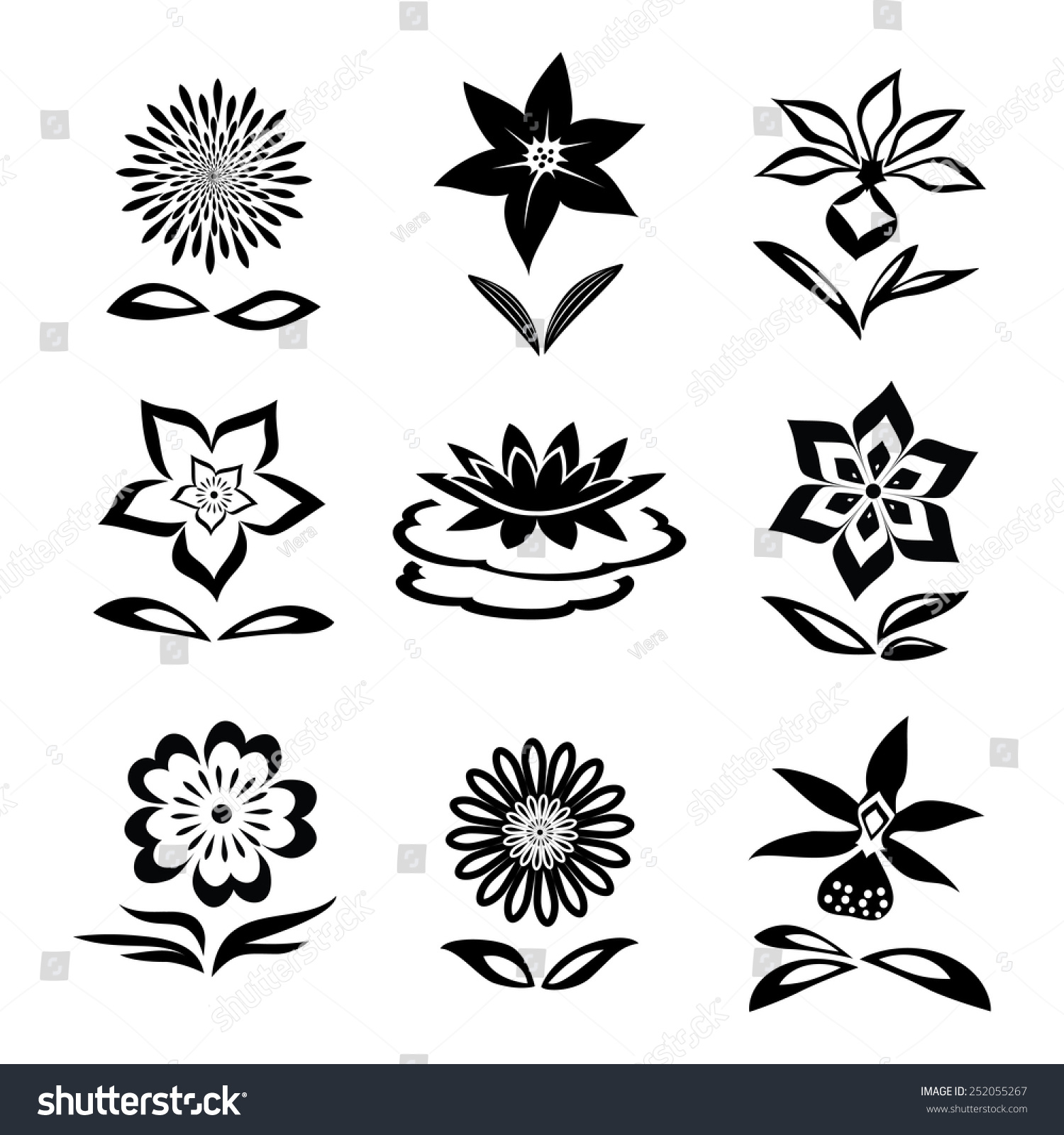 9 Flower Set Chamomile Lily Orchid Stock Vector 252055267 ...