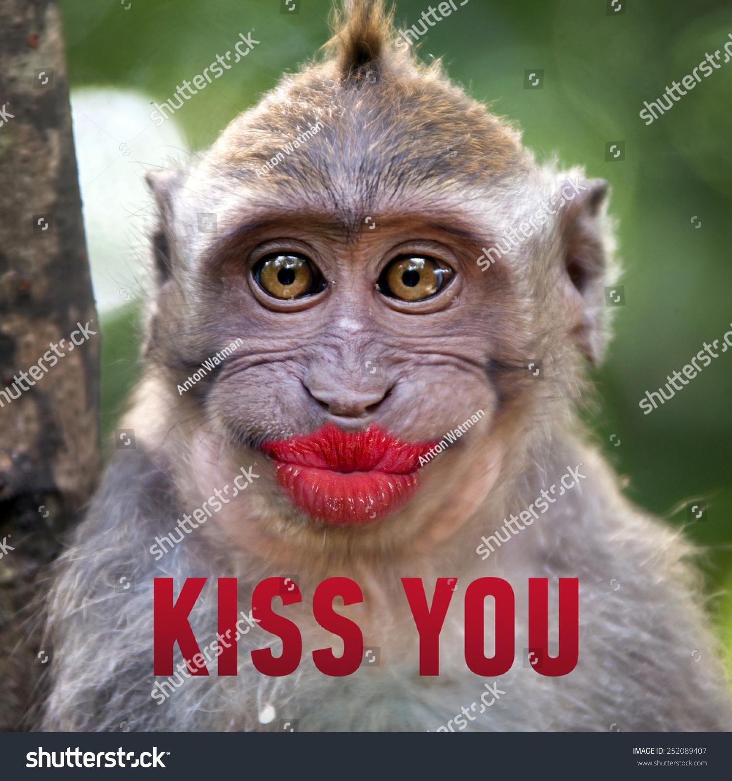 Big Kiss Funny funny monkey big red lips words stock photo 252089407 ...