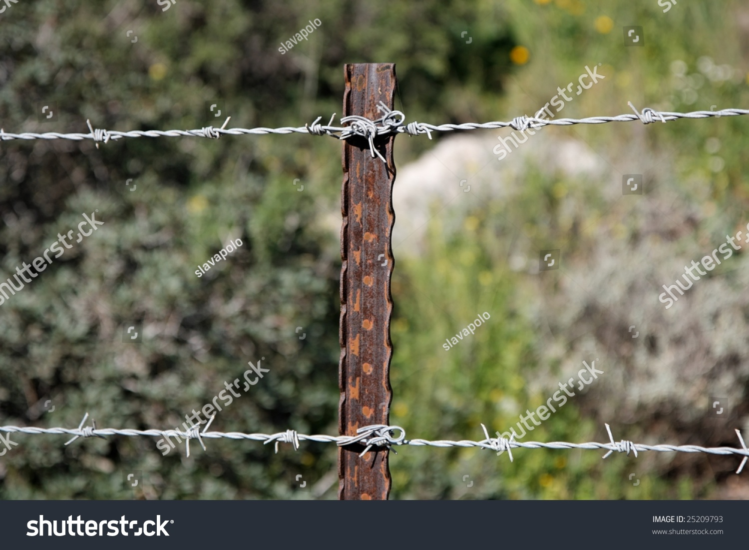 Two Strands Barbed Wire Fence On Stock Photo (Download Now) 25209793 ...