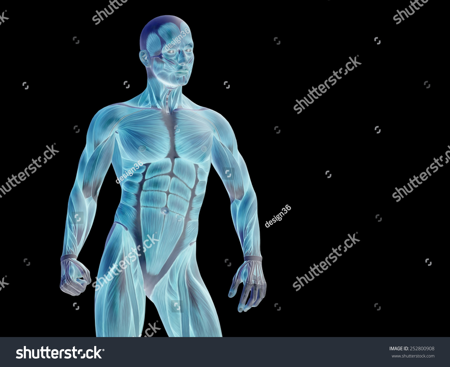 Concept Conceptual Human Man 3 D Anatomy Stock Illustration ...