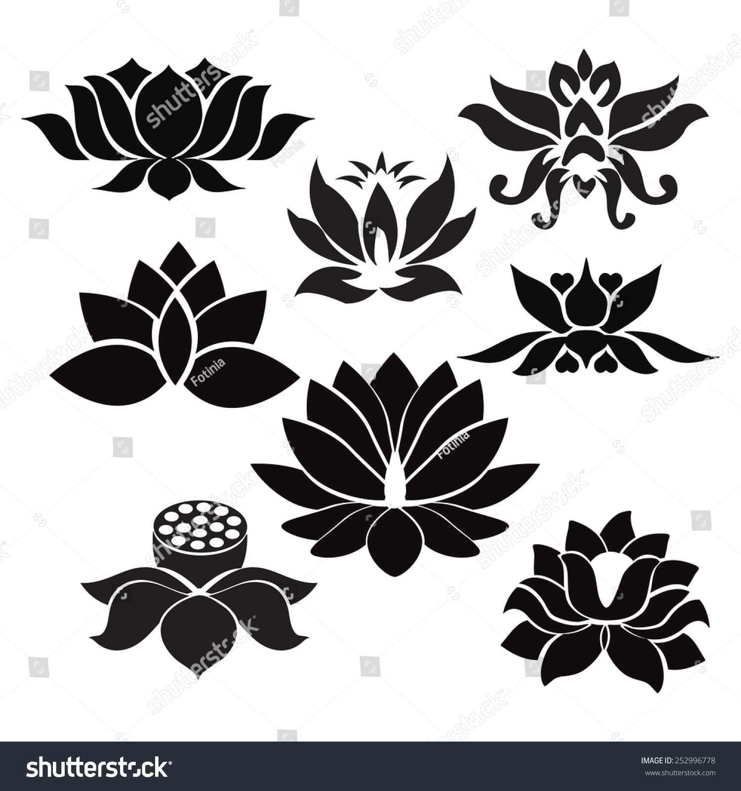 Vector Lotus Flowers Silhouettes Set Eight Stock Vector Royalty