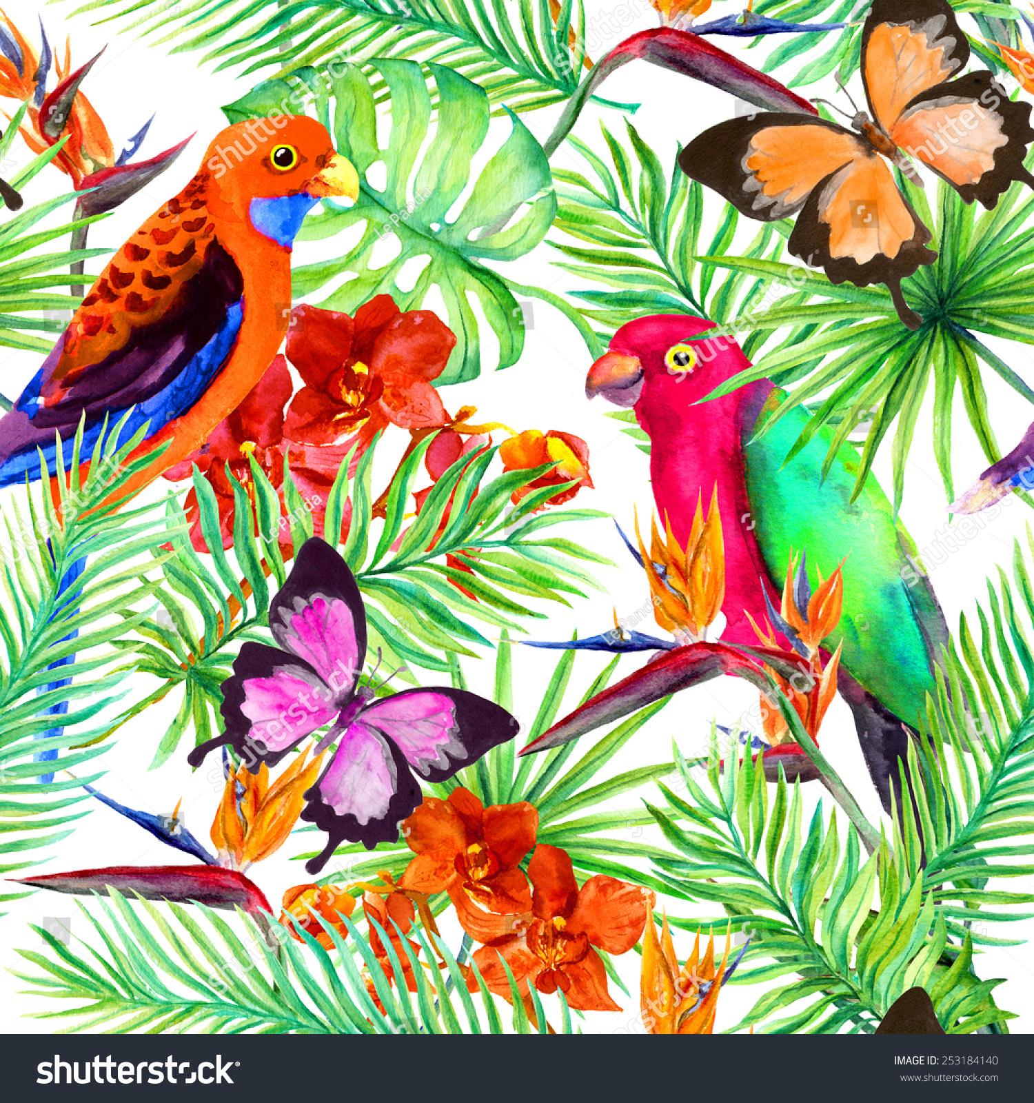 exotic colors. pintando o cabelo com tinta exotic. beautiful