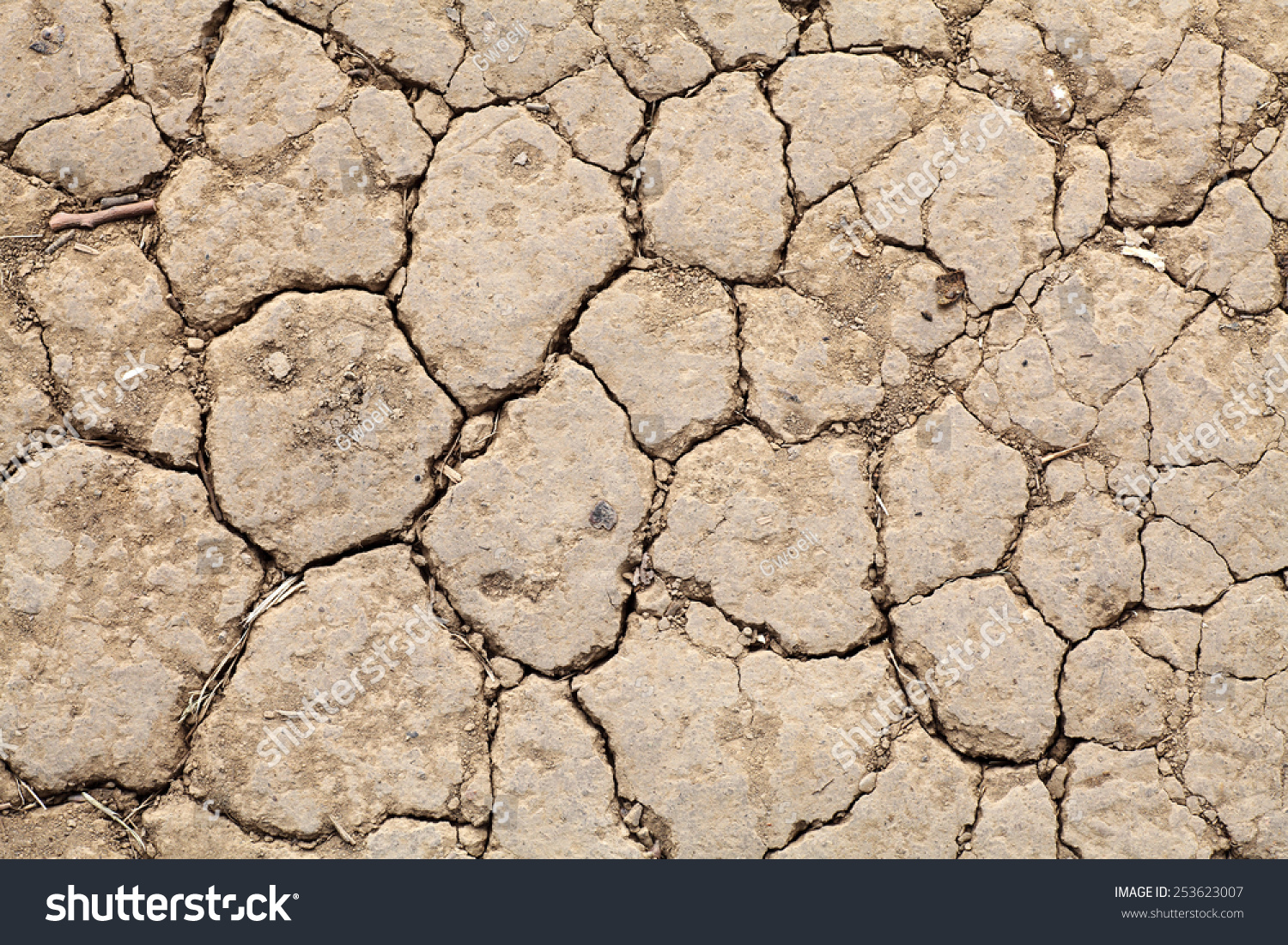 Facade cracking dried reddish laterite dirt stock photo 253623007 facade of a cracking dried reddish laterite dirt erosion surface for textural background sciox Images