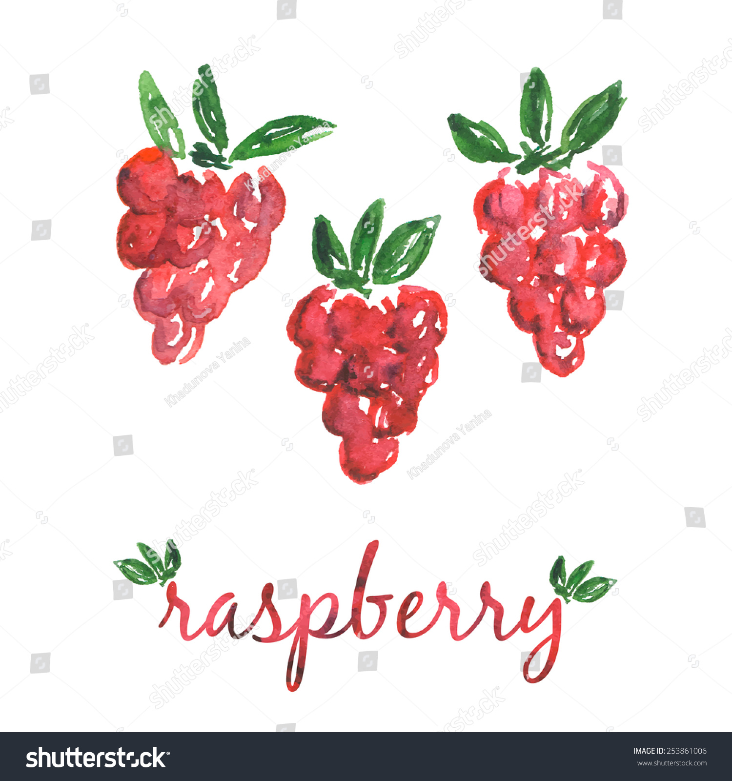 Watercolor Handdrawn Invitationgreeting Card Raspberry Stock Vector