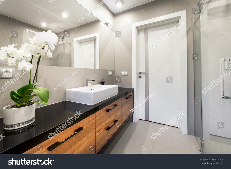 Modern Luxury Bathroom Interior Design Stock Photo (Royalty Free ...