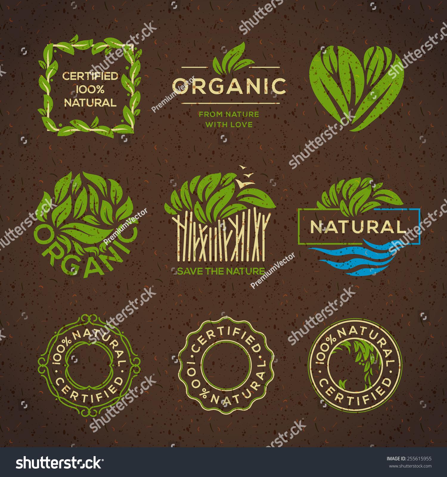 Healthy Food Restaurant Names