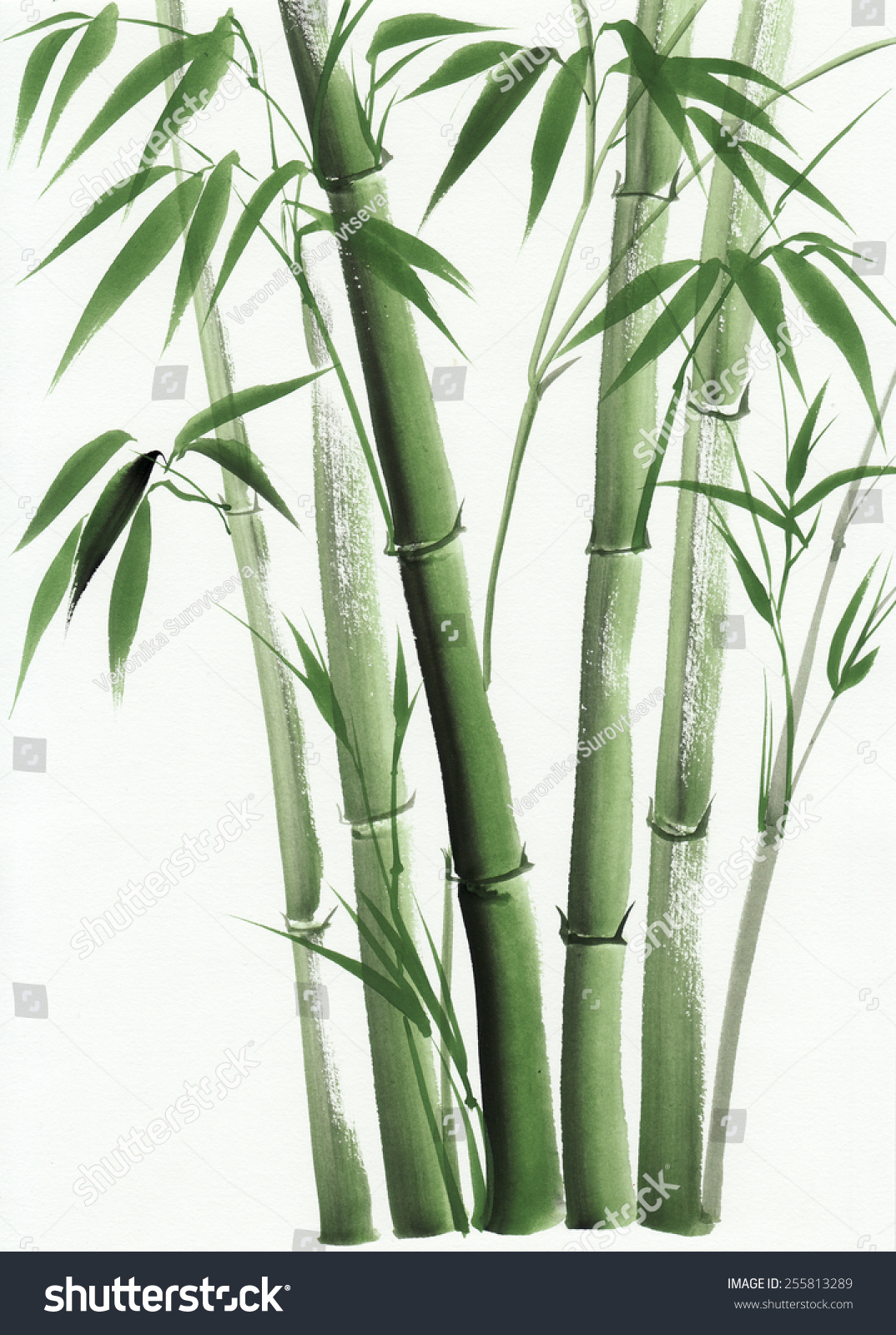 in a bamboo grove creative re write Washington 150 in x 108 in bamboo grove wall mural abstract murals bring a creative presence to your walls that are the home depot canada the home depot.