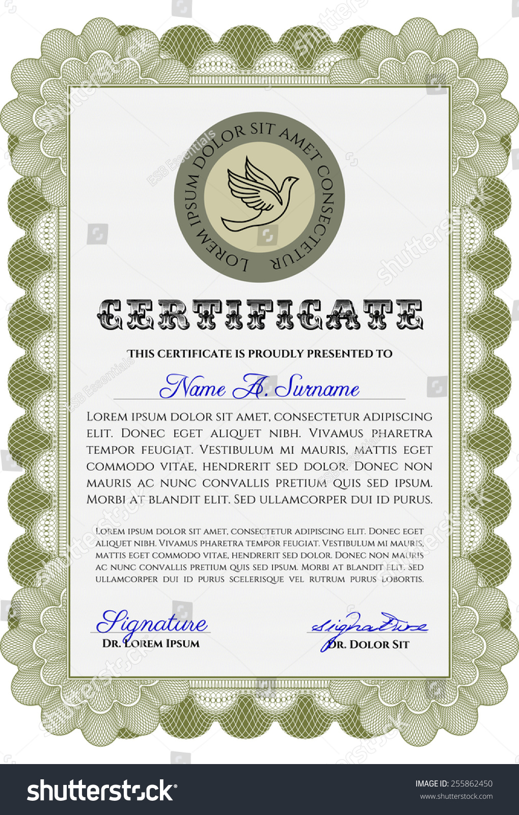 Green vertical diploma certificate template sample stock vector green vertical diploma certificate template sample stock vector 255862450 shutterstock yelopaper Images