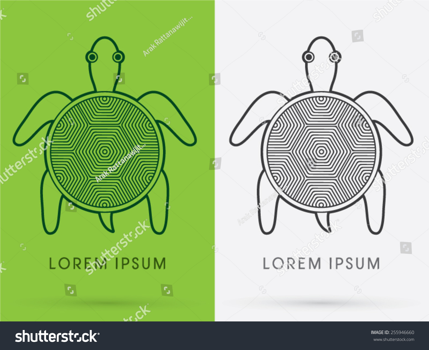 Top view outline turtle icon symbol stock vector 255946660 top view outline turtle icon symbol logo vector biocorpaavc