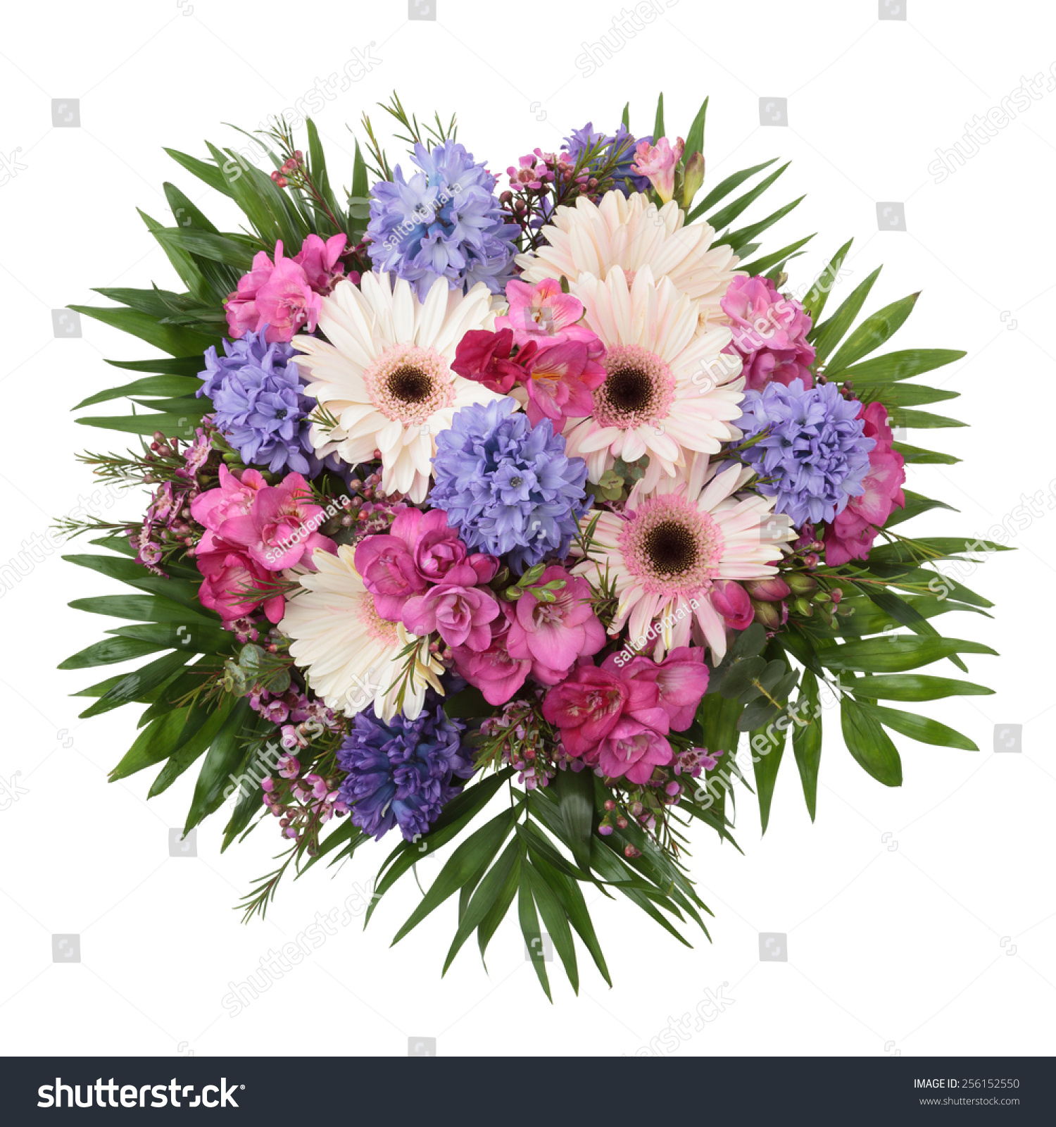 Hyacinth gerber freesia flowers bouquet seen stock photo image hyacinth gerber and freesia flowers bouquet seen from above on white background izmirmasajfo