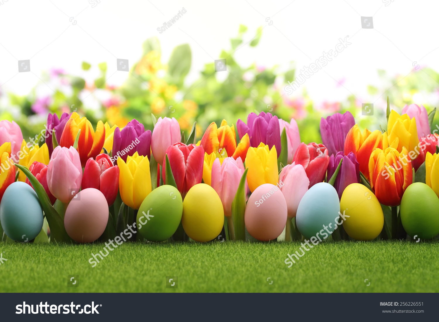 Easter Eggs Decorated Flowers On Meadow Stock Photo 256226551 ...