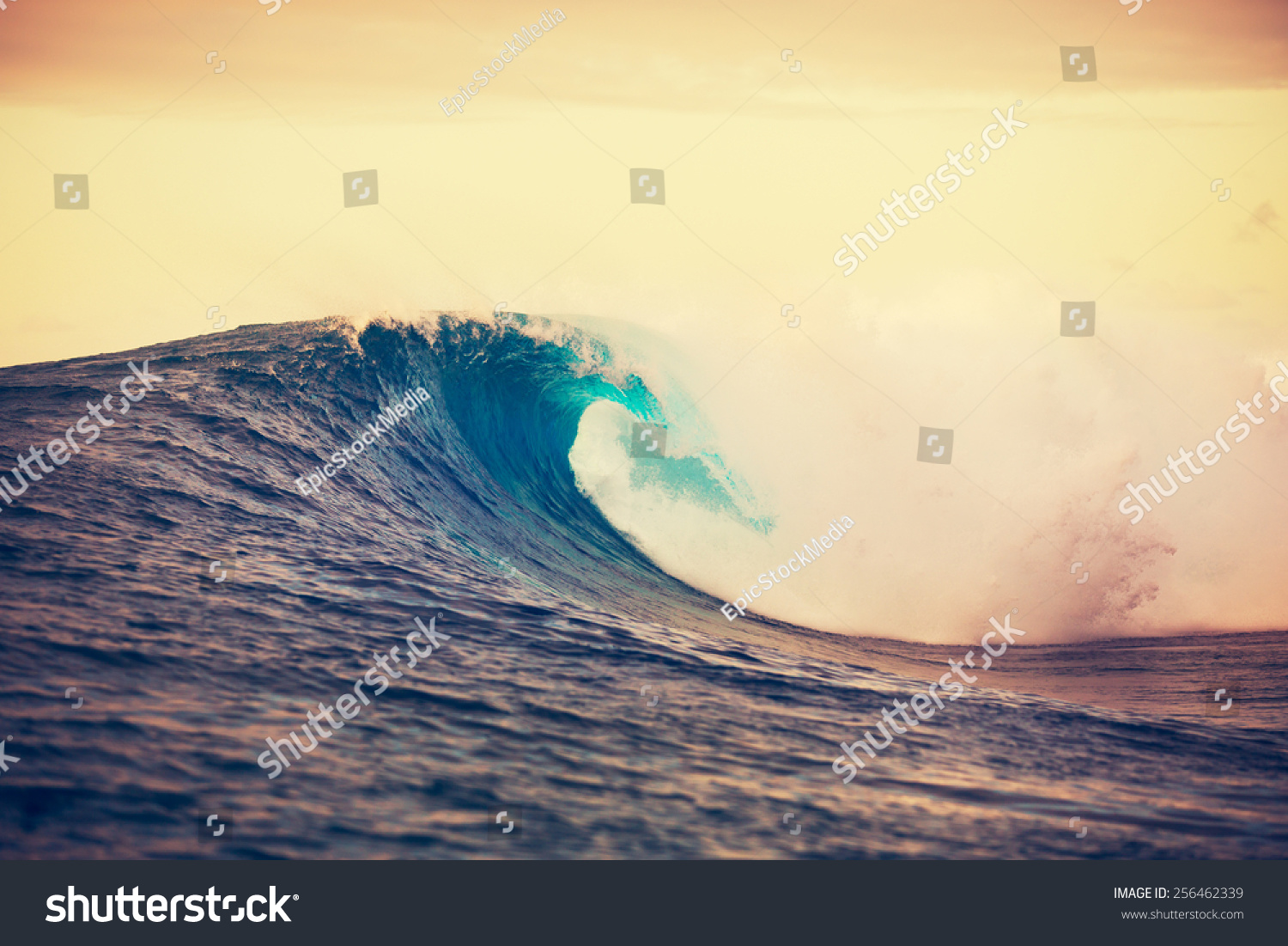 Amazing ocean wave breaking at sunset epic surf stock for Amazing ocean images