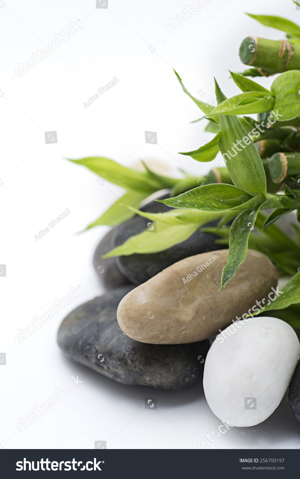 zen stones and bamboo - photo #17