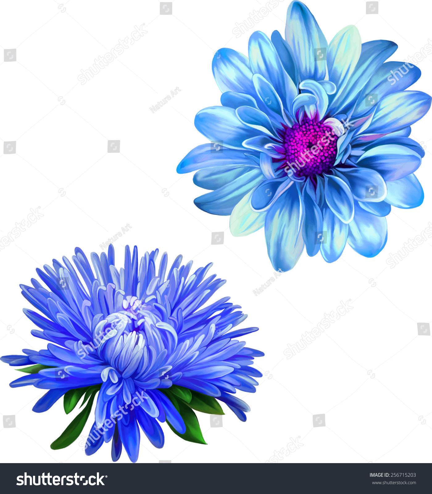 Vector Mona Lisa Flower Blue Flower Stock Vector Royalty Free
