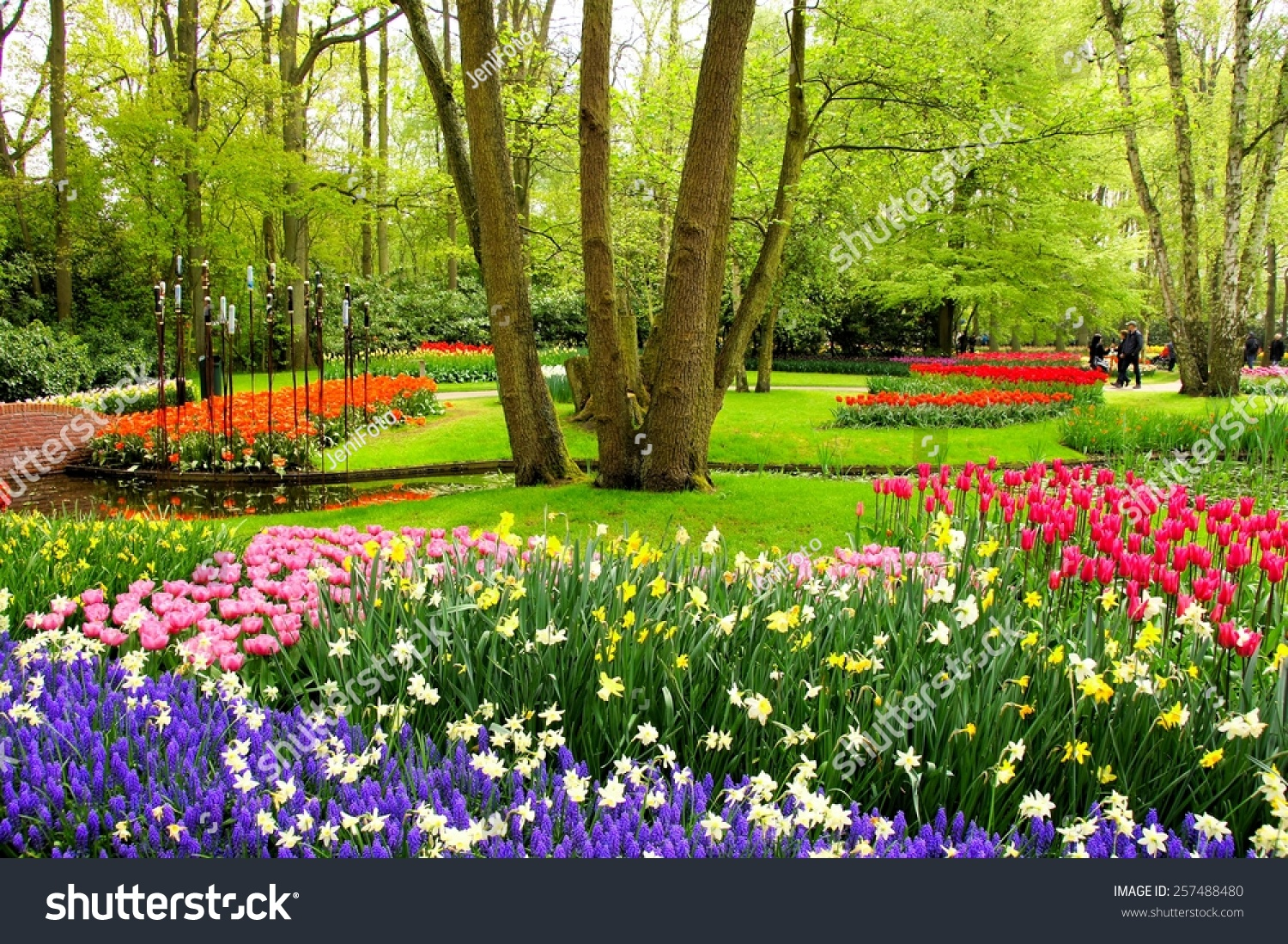 Colorful spring tulips flowers keukenhof gardens stock for Flowers and gardens pictures