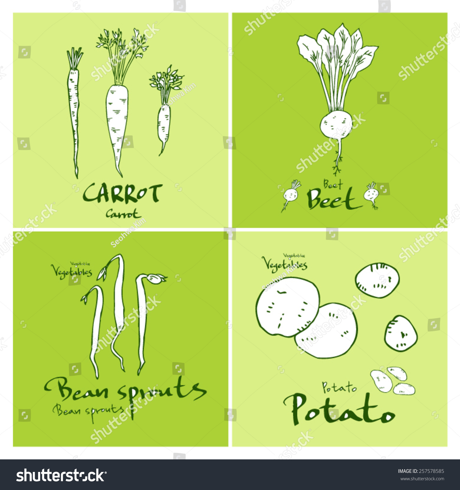 Vegetable and fruit illustrations Hand drawn food ingredients vector