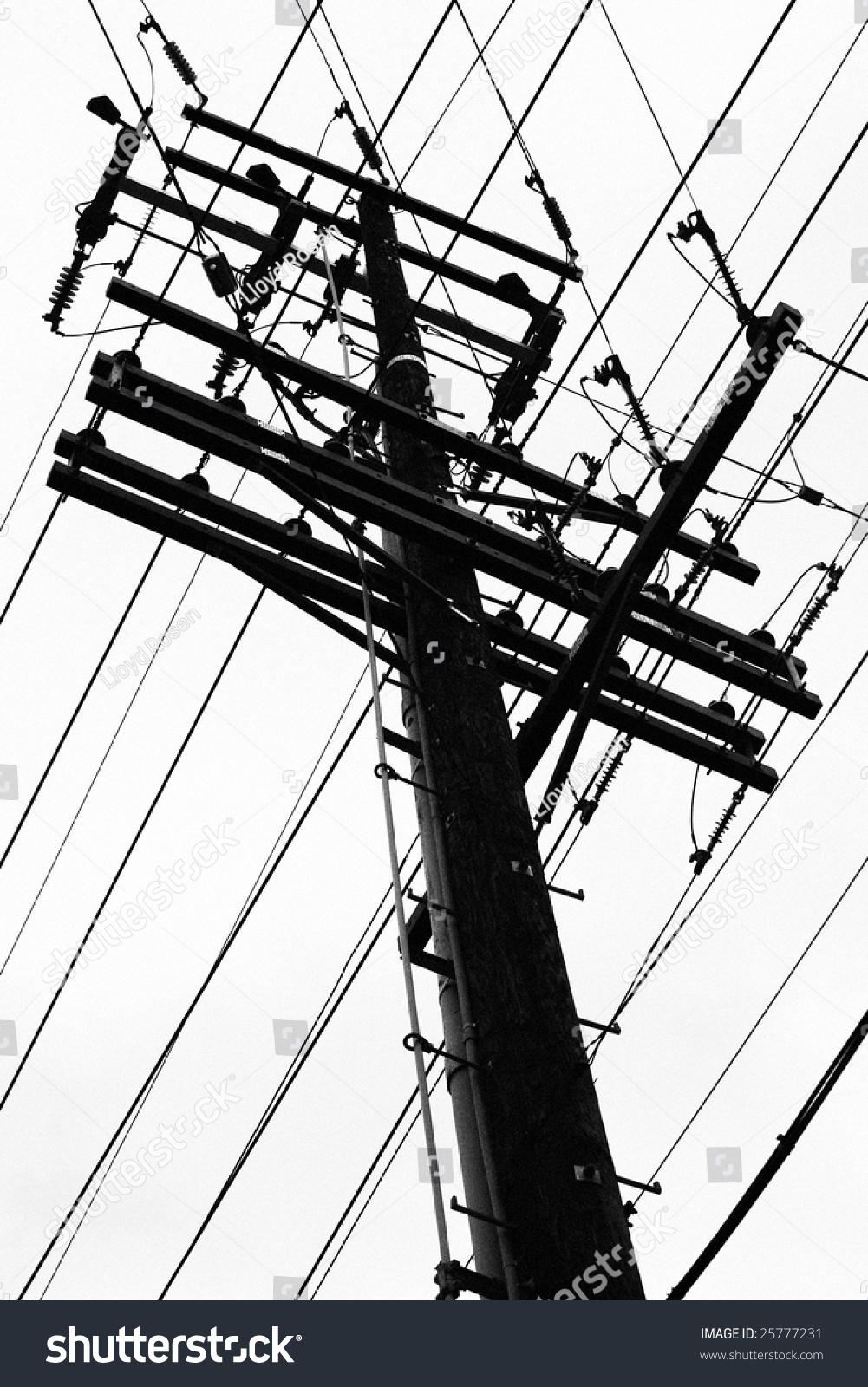 Telephone Pole Wires Stock Photo (Edit Now)- Shutterstock