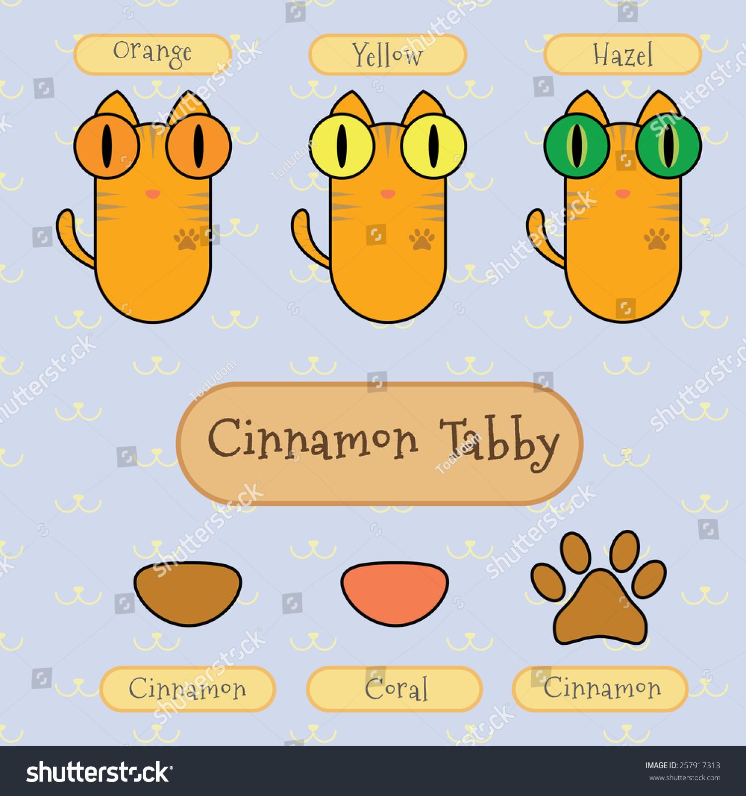 tabby cat eye color   Best Cat Cute Pictures, Meme ...