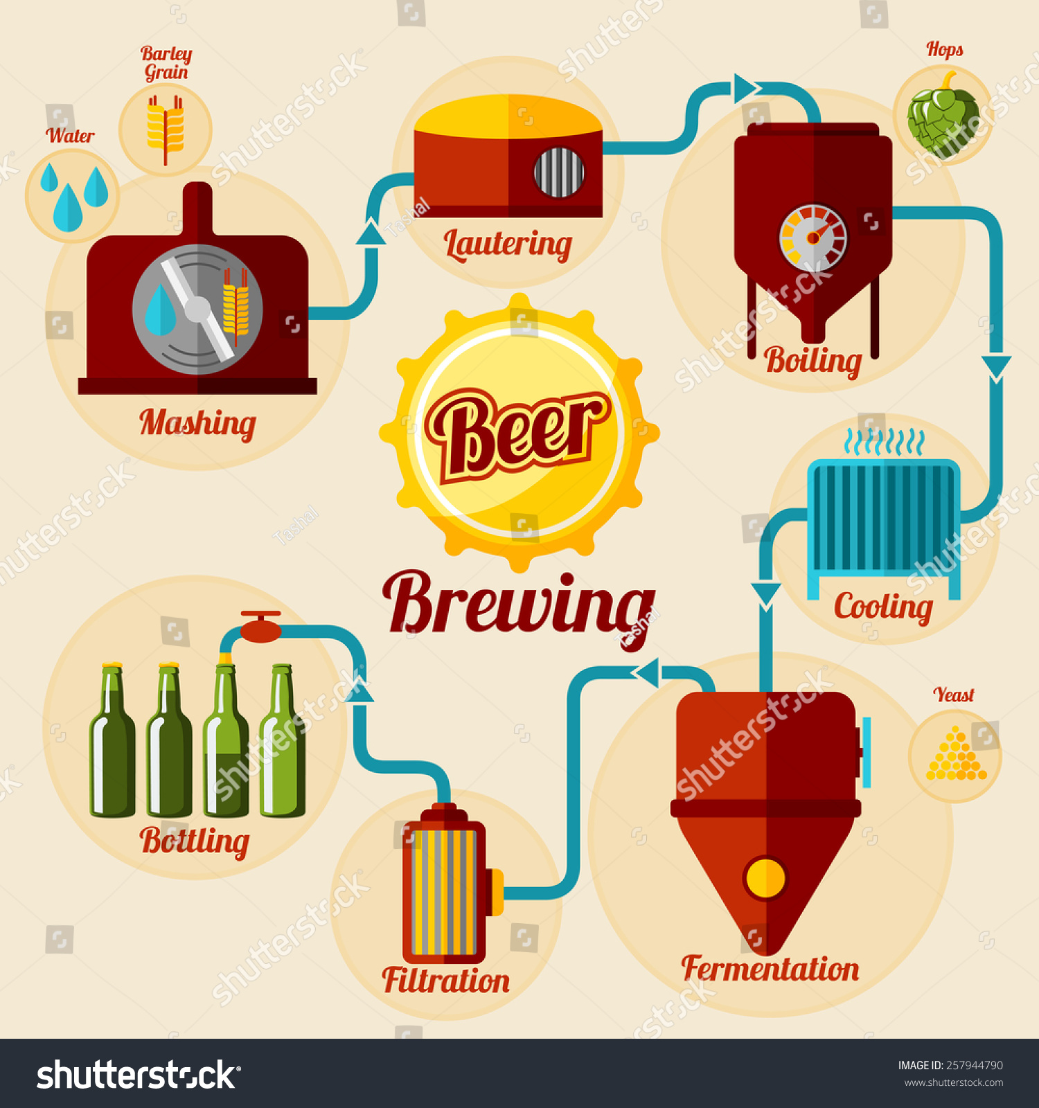 Beer Brewing Process Infographic Flat Style Stock Vector 257944790 ...