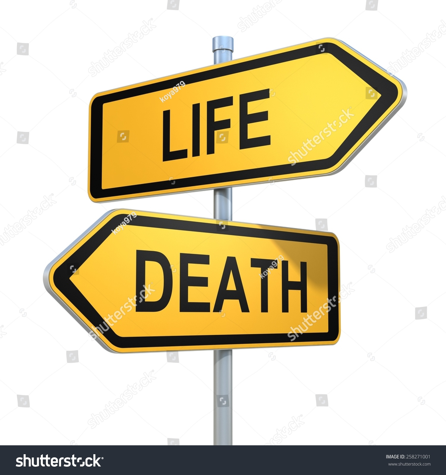 """life and death a journey of choices No list of the top 10 """"must reads"""" about death and end-of-life  life book club the son's journey through  to cover all end-of-life issues and choices."""
